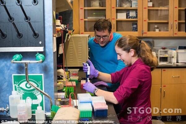 微软展示黑科技:DNA存储技术 数据中心浓缩到方糖大小
