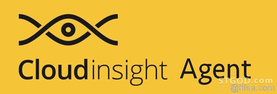 可视化系统监控工具 Cloudinsight Agent 正式开源