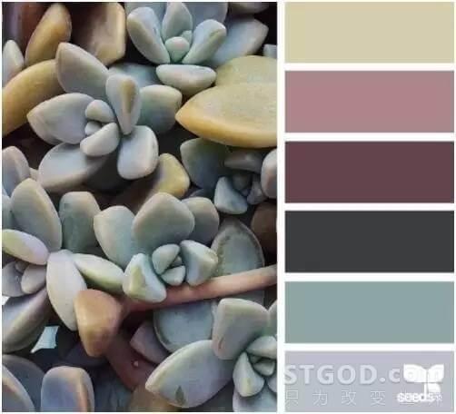 怎样的PPT 配色会让人觉得舒服?